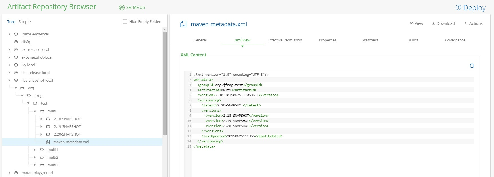 Maven Metadata View